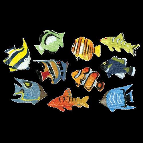 Mini Tropical Fish